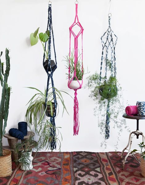 03 jungle love plant hanger.jpg20180518 156 10donl0