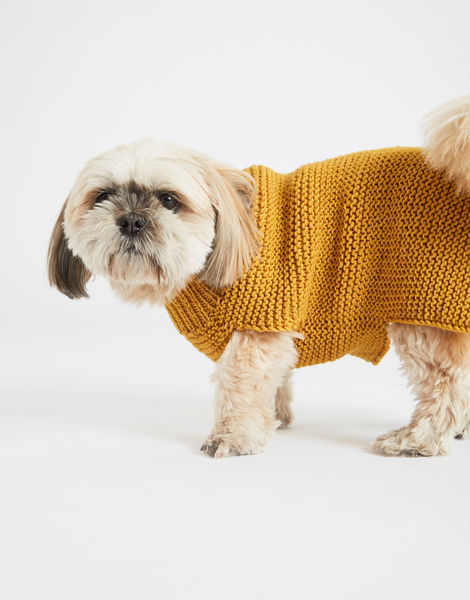 Dogs life sweater 14