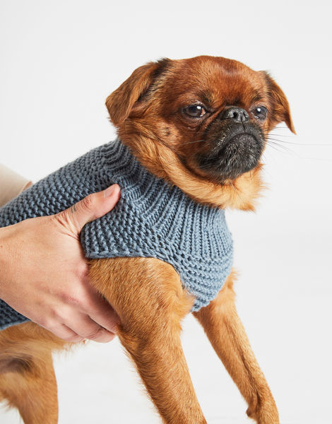 Dogs life sweater 20