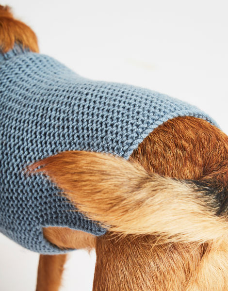 Dogs life sweater 19