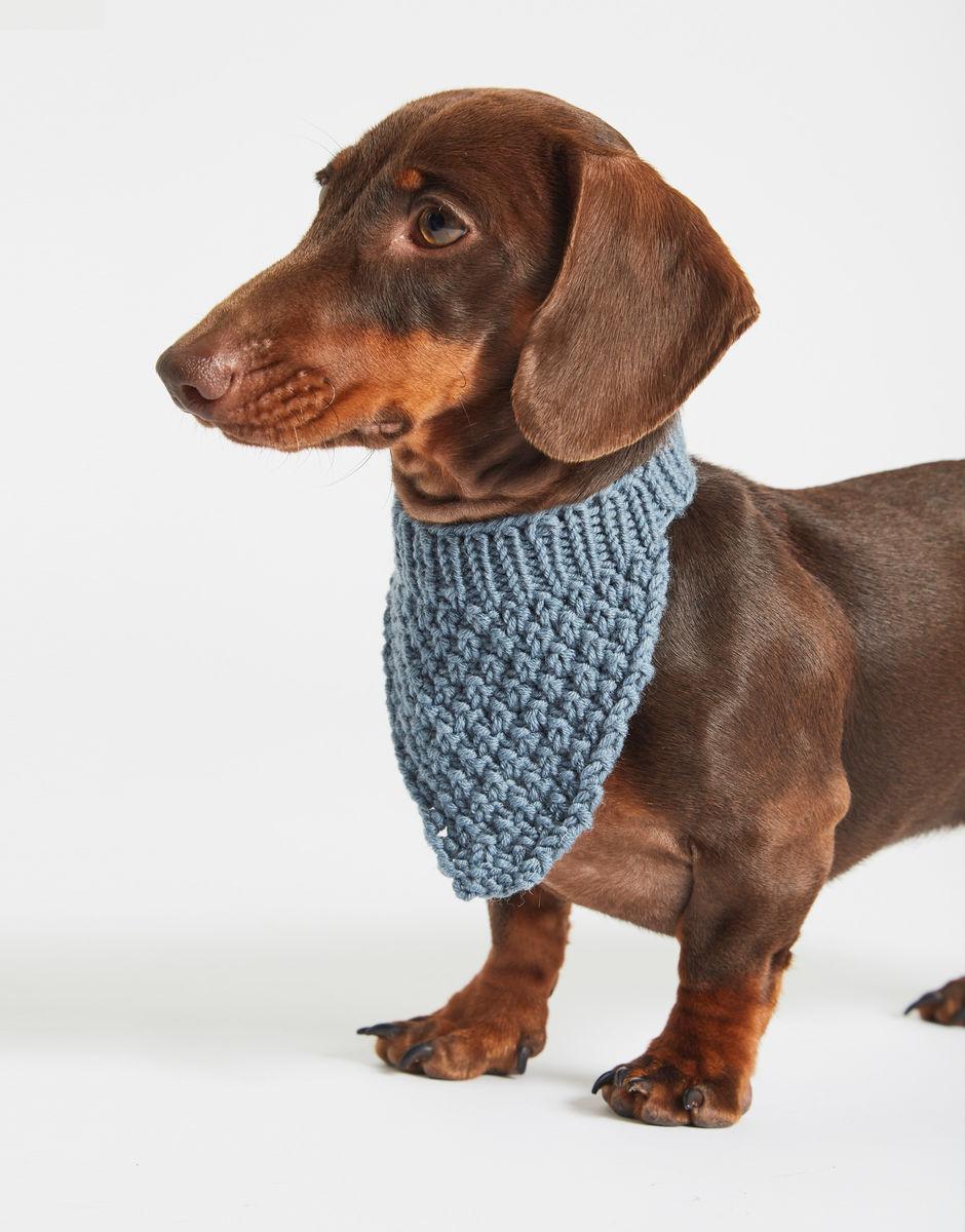 luxury wool range Dog bandana