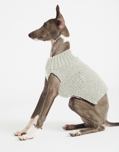 Dogs life sweater 1 index stw ivory white