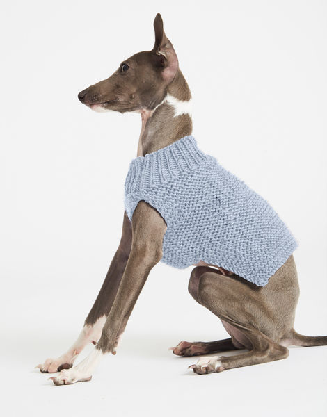 Dogs life sweater 1 index stw powder blue