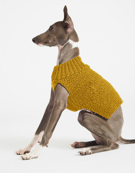 Dogs life sweater 1 index stw mustard sally