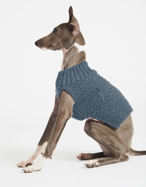 Dogs life sweater 1 index stw slate blue