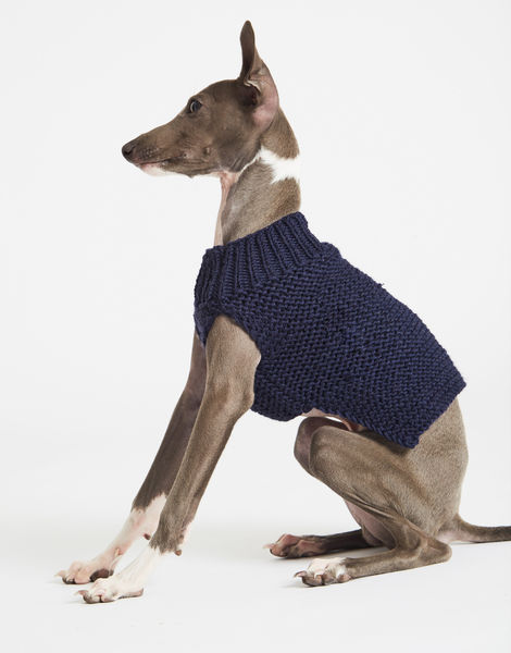 Dogs life sweater 1 index stw midnight blue