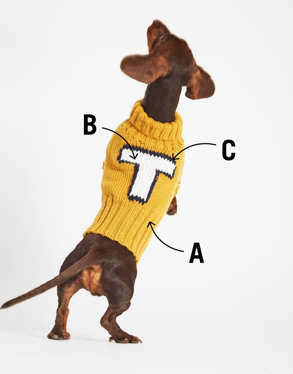 Winter Dog Clothes Dog Sweatshirt Dog Hoodies Ready To Ship Small Dog Dog Clothes Warm Dog Clothes | Pink Dog Hoodie