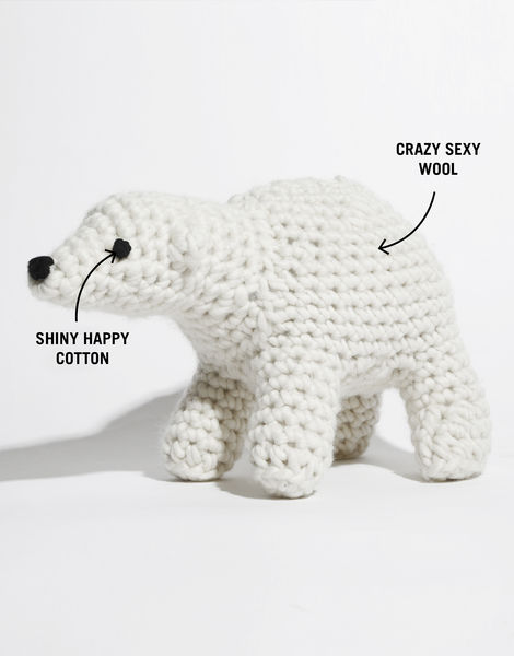 Bruno the polar bear csw shc labelled