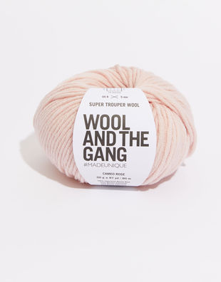 Super trouper yarn sty cameo rose