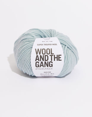 Super trouper yarn sty duck egg blue